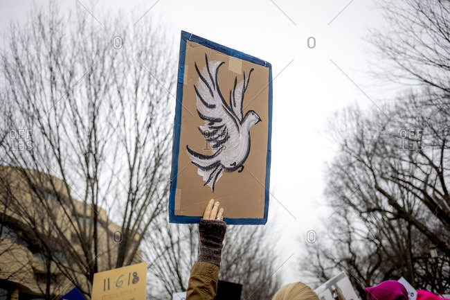 Washington, D.C., USA - January 21st, 2017: The Women's March from the US Capitol building down the Mall to the Whitehouse. A sign with a white dove symbolizes peace is held above the crowds head.