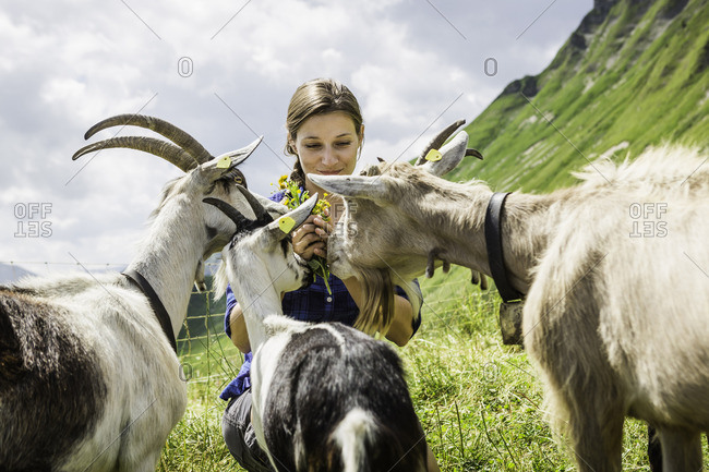 Mid adult woman with goats, Tyrol, Austria