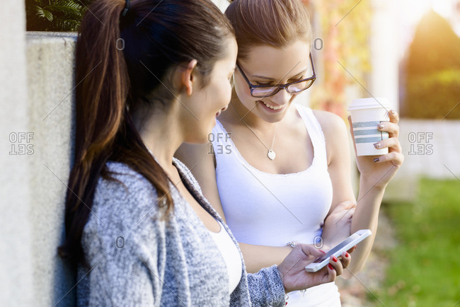 Two young women leaning against park wall reading texts on smartphone