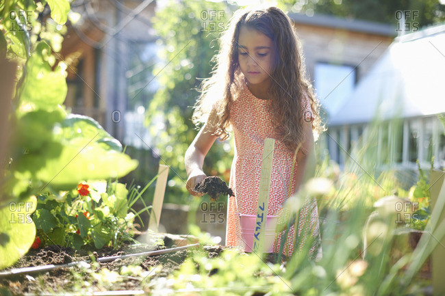 Girl digging raised plant bed in garden