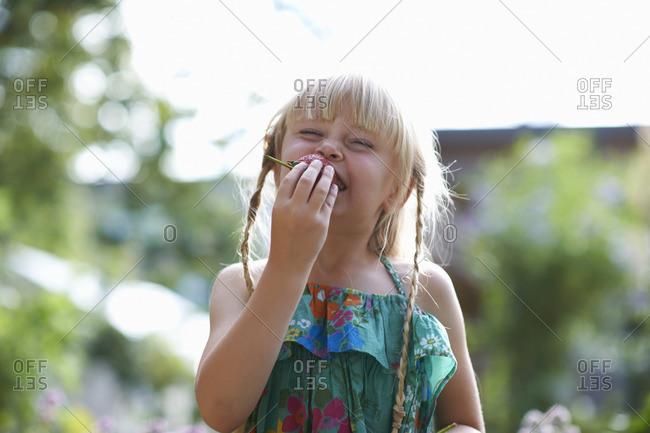Portrait of girl eating a fresh strawberry in garden