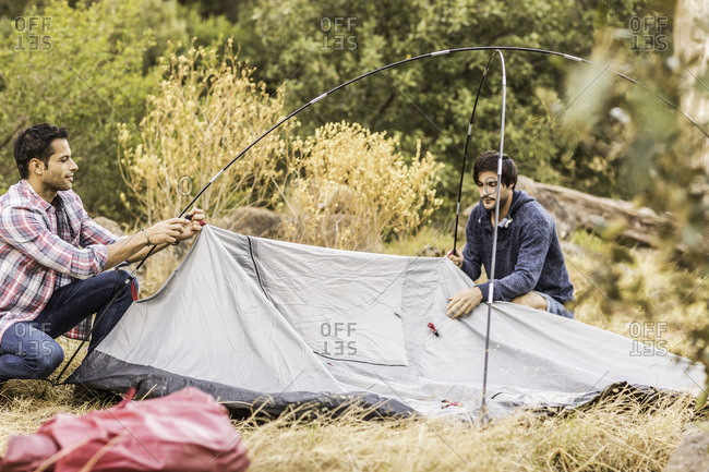 Two men putting up tent in forest, Deer Park, Cape Town, South Africa