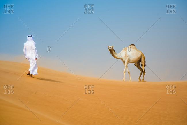 Middle eastern man wearing traditional clothes walking toward camel in desert, Dubai, United Arab Emirates