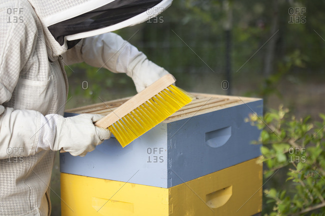 July 13, 2016: Beekeeper with brush by apiary