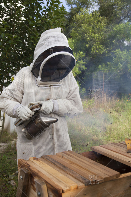June 16, 2016: Beekeeper smoking a top-bar beehive