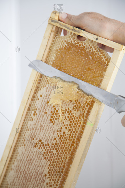 Removing honey from honeycomb