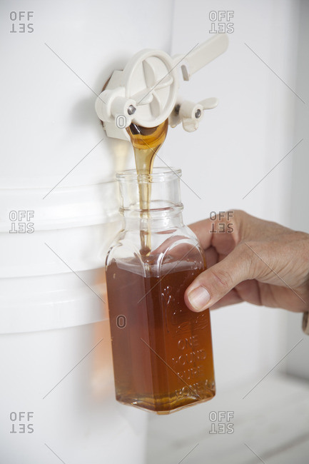 Filling a jar with filtered honey