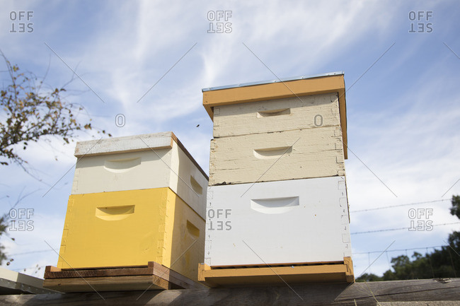 Beehive boxes in close up