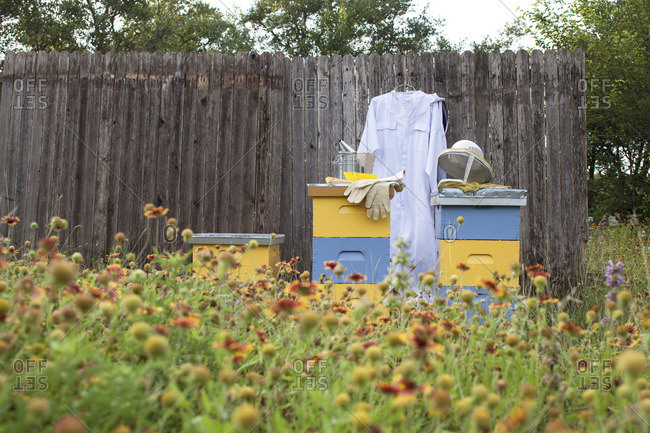Beekeeping suit with boxes