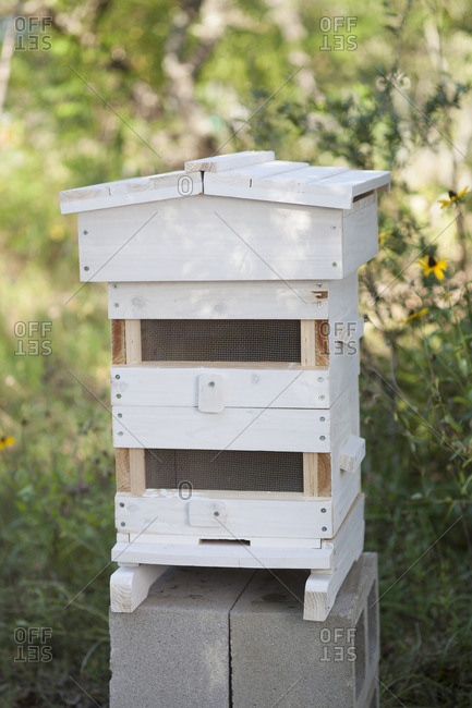 A beehive outdoors on blocks