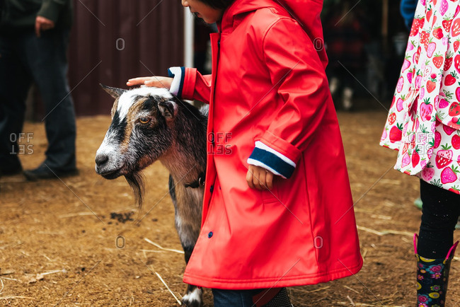 Girl in petting zoo with goat