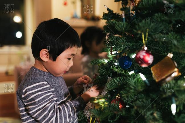 Boy looking close at Christmas tree