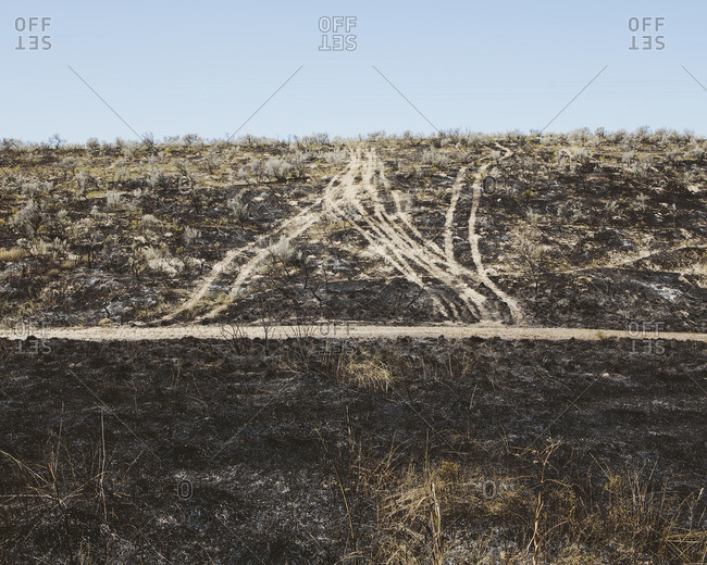 Roads extending through recently burned landscape