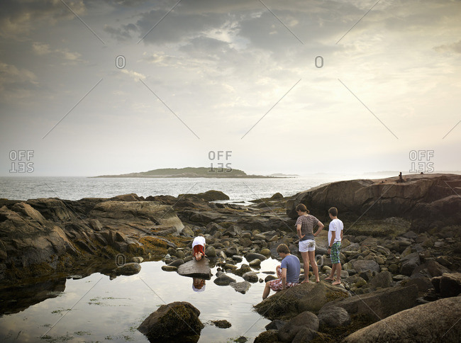 A group of people on the shore, rock pooling, and exploring the marine life. View to an island offshore.