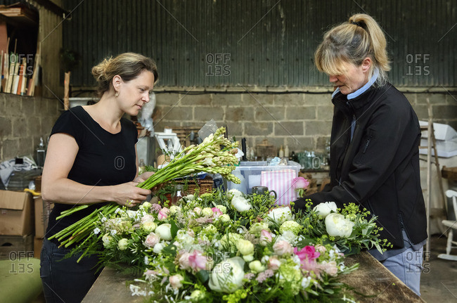 Commercial flower arranging. Two women at a workbench creating floral table decorations and arrangements.