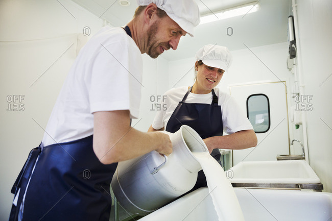 Man and woman  in a creamery, pouring goats milk from a churn, making goats cheese.