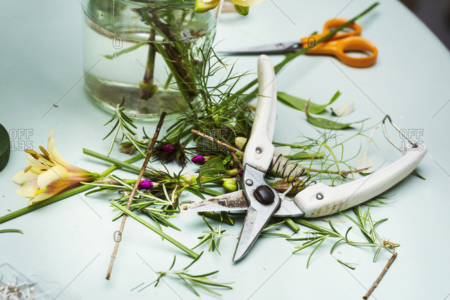 Flower arranger's workbench. Secateurs, scissors and plant stalks and trimmings.