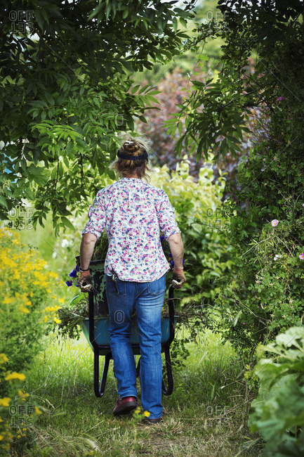 A woman pushing a wheelbarrow of garden clippings along a path.