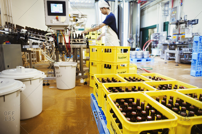 Japan - August 3, 2016: Worker in a brewery, yellow plastic creates with beer bottles.