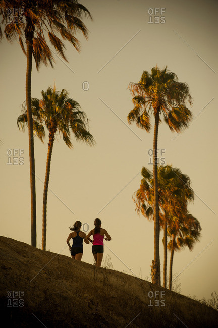 Mixed Race mother and daughter running under palm trees