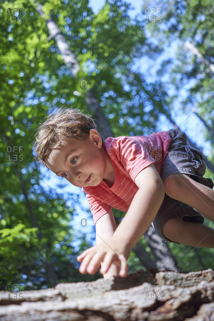 Boy climbing on a fallen tree in the forest