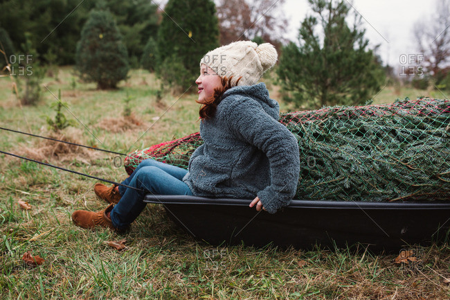 Girl sitting in a sled with a Christmas tree on a farm