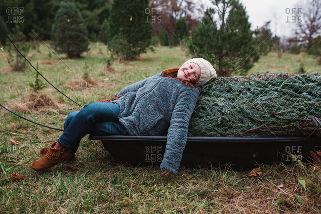Little girl leaning against a Christmas tree in a sled and smiling