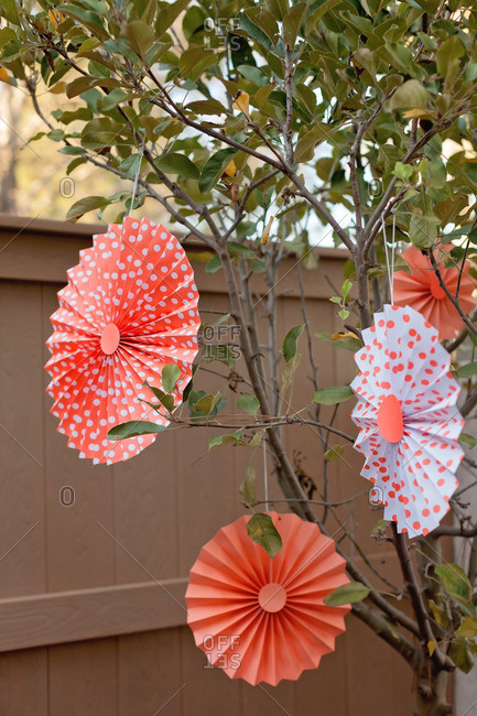 Pleated paper decorations hanging from a tree