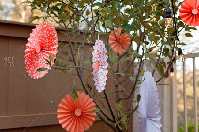 Pleated paper decorations hanging in a tree outdoors