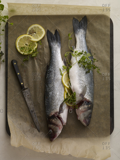 Preparing fresh fish to be stuffed with lemon slices and herbs