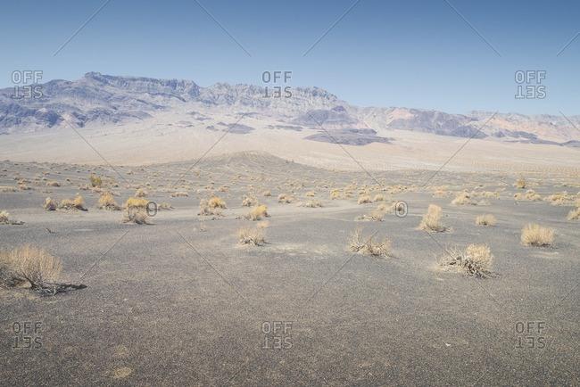 USA- California- Death Valley National Park
