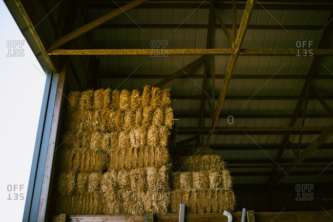 Bales of hay stacked in barn