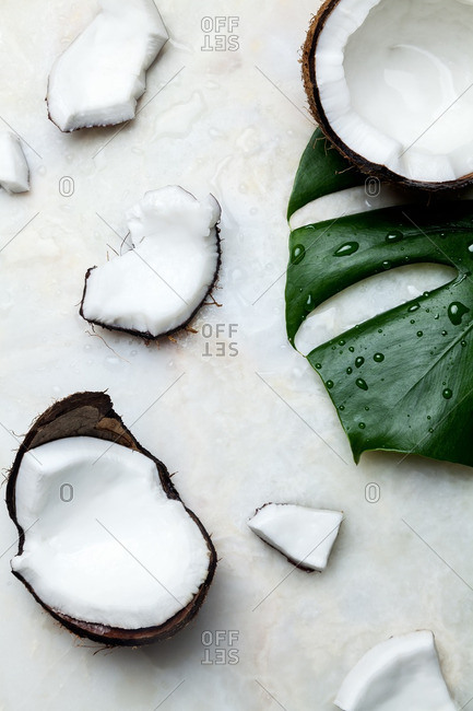 Opened coconut with tropical leaf on white background