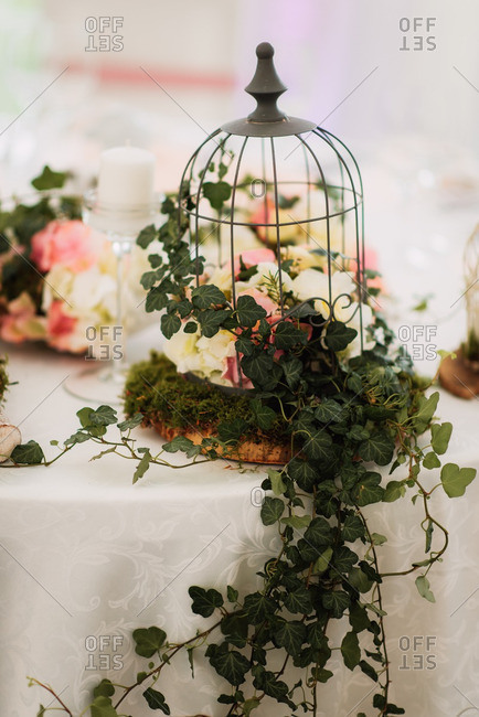 Wire birdcage on with leafy vines and flowers