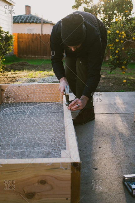 Man hammering a nail into a wooden frame with chicken wire