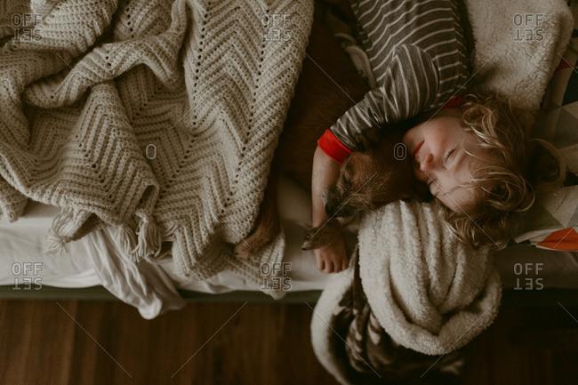 Boy asleep with a dog