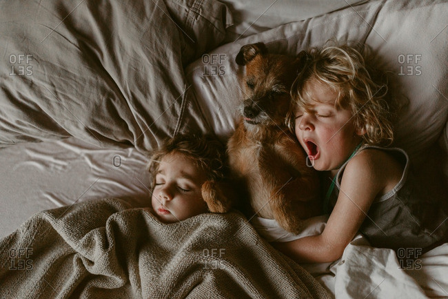 Two kids napping with dog