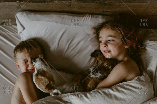 Two kids cuddling with two dogs