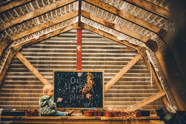 Toddler boy sitting on a wooden table in a potting shed