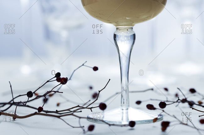 Branches beneath a Brandy Alexander cocktail
