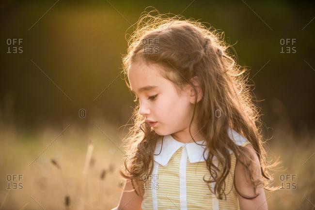Portrait of a little girl standing in golden light