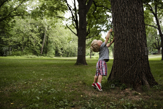 Boy with stick standing on tiptoe by tree trunk