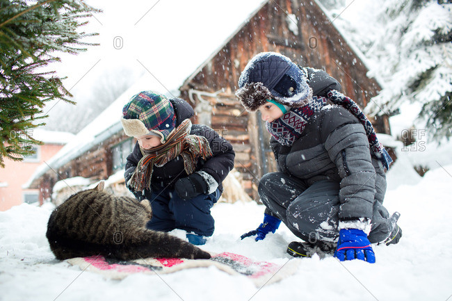 Side view of two little brothers in warm winter clothes taking care of a cat on a snowy day