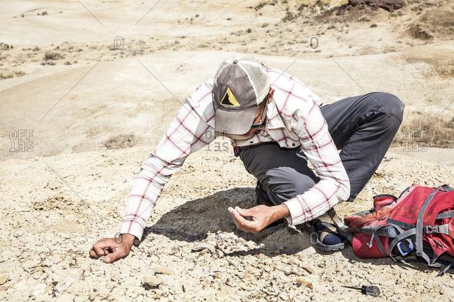 Man examining soil in desert