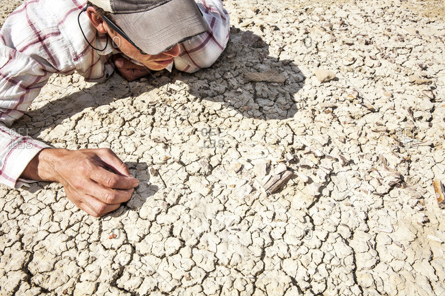 A man looking close at soil in desert