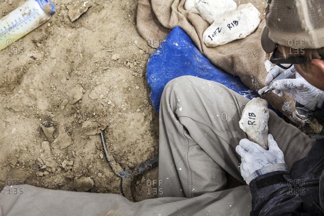 Man labeling molds made in desert