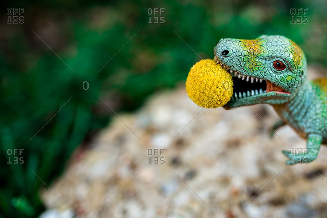 Toy Tyrannosaurus rex dinosaur with yellow ball in mouth