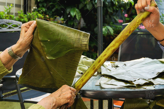Woman holds stalk while another cuts plantain leaf off for use in tamales