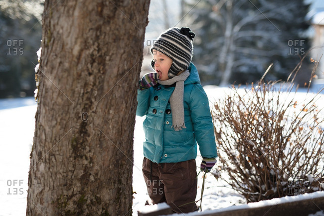 Young child tasting snow next to tree in backyard