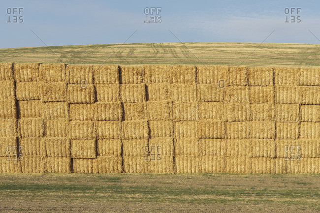 Stacked hay bales, Palouse, Washington